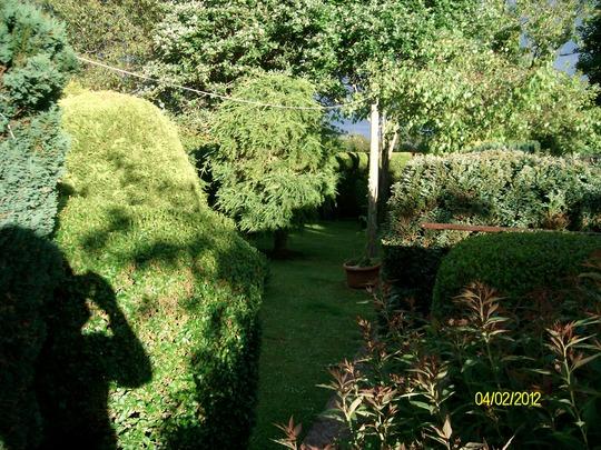 top part of garden