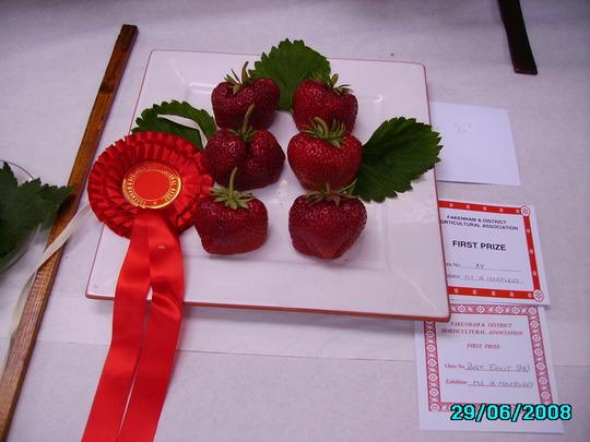 Strawberries (BIG D)