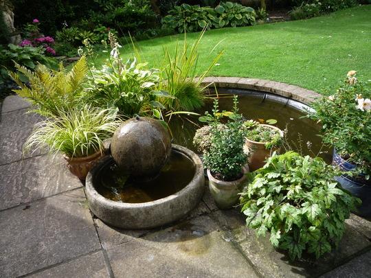 Pots around the pond