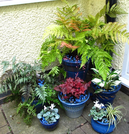 Blue Pots ~ re-grouped