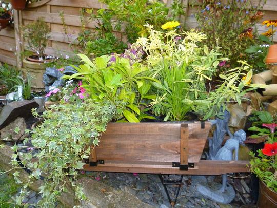 cart planter
