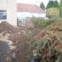 Front garden 'Before'