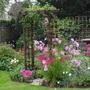 Cimg8084september_garden