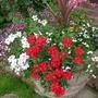 10_9_2012_val_garden_005