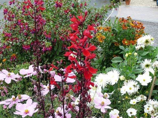 10 9 2012 Val Garden 009