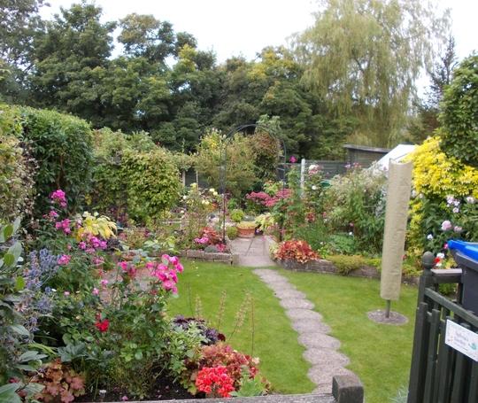 Garden 21.9.12