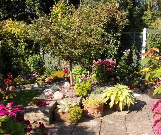 Lower Garden from Steps