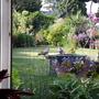 My back garden when in bloom..