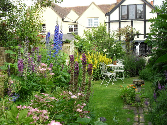 my first cottage garden