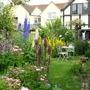 my first cottage garden