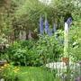 canturbury and garden 024