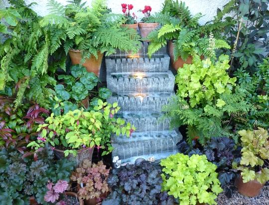 Water feature and Heuchera garden