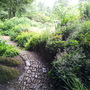 Hidcote - stone path in damp shade