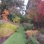 Knoll Gardens, Wimborne, East Dorset