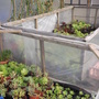 poly tunnel filling up