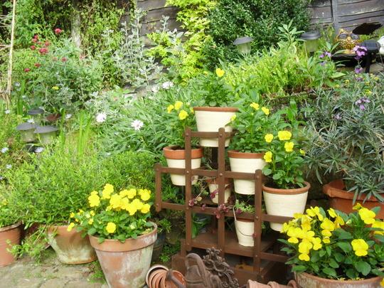 Wine rack plant pot holder