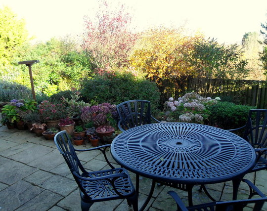 The back patio 18.11.12