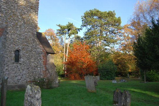 The 'Church in the woods'. taken 19/11/12