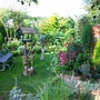 my garden in 2009