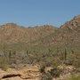 Desert_museum_view1
