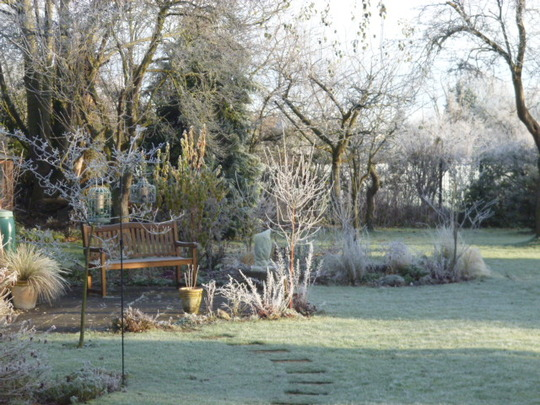 Frosty December morning