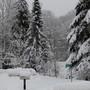 snowblindness....