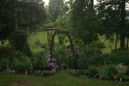 Grapevine Archway Garden