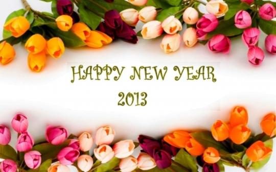 HAPPY NEW YEAR EVERYBODY!