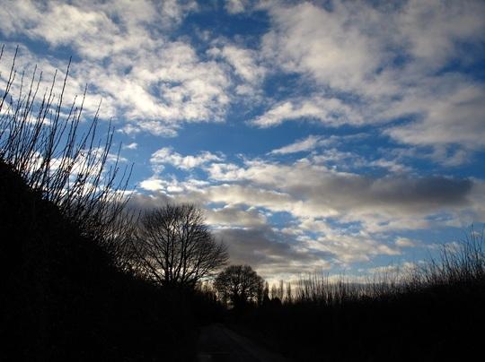 Blue skies make me smile!
