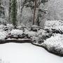 Heavy snow fall in my garden