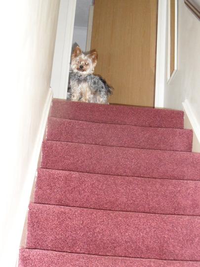 You Coming Up Mum....