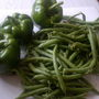 Peppers and green beans from my veggie patch