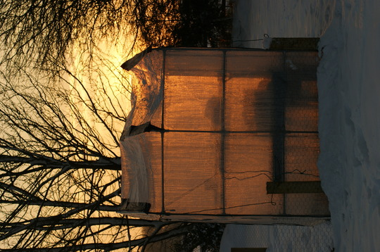 Sunset thru poly house!