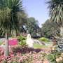 mowbray park sunderland