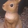 Rebecca rabbit/Becky Bunny :D