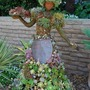 Great use of succulents