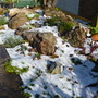 Rockery after the snow