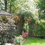 My_garden_447