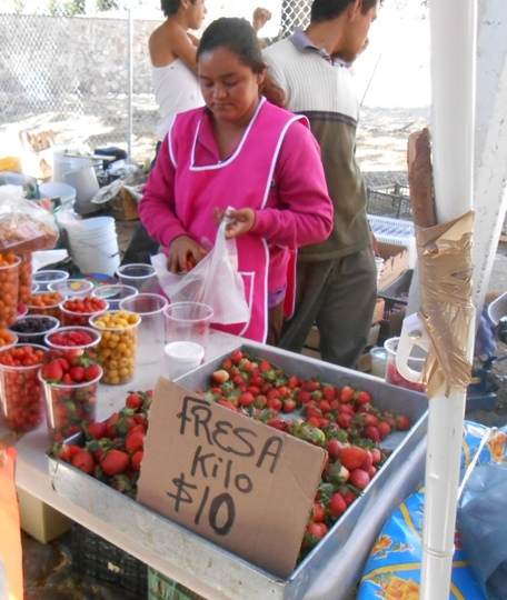Seller of berries