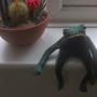 Frog's all grumpy :D