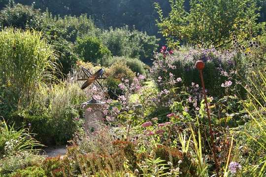 garden_view.jpg
