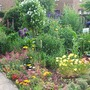 my garden the other side