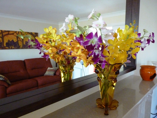 Beautiful orchids brought all the way from Singapore...