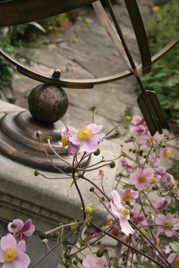 sundial_and_anemones.jpg
