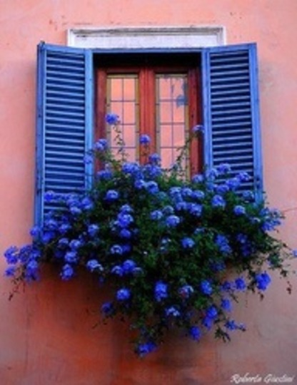 Italy .....such a lovely vibrant blue against those beautiful soft-coloured exterior walls.