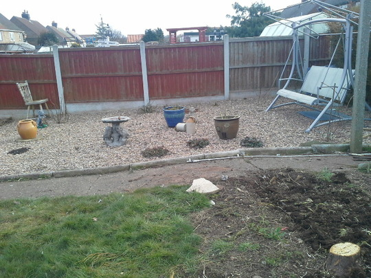 finished bit of garden