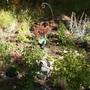 New Garden September 2 2012