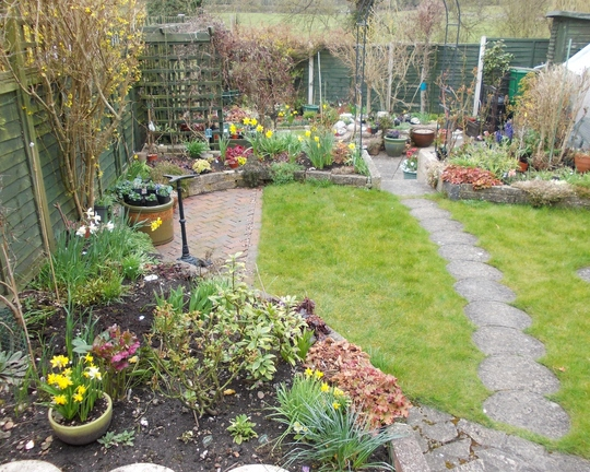My garden today.