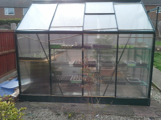 greenhouse fixed?