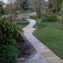 Garden_daffs_and_planting_by_the_arbour_022